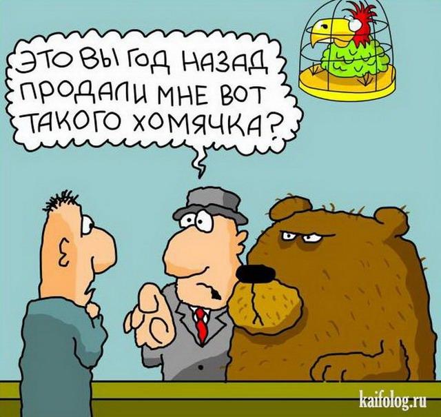 Анекдот медведь с хомячком