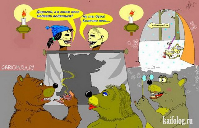 Видео Анекдоты Про Медведя