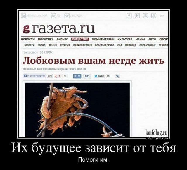 Чисто русские демотиваторы - 132 (50 фото)