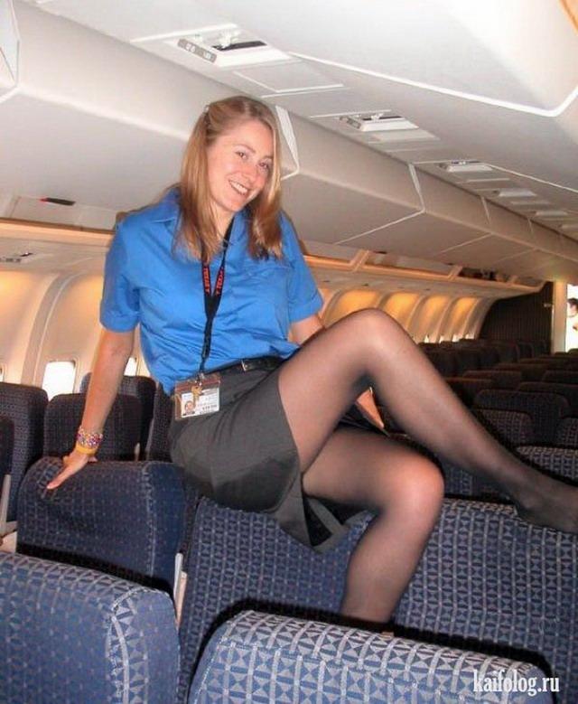Секси стюардессы скачать бесплатно