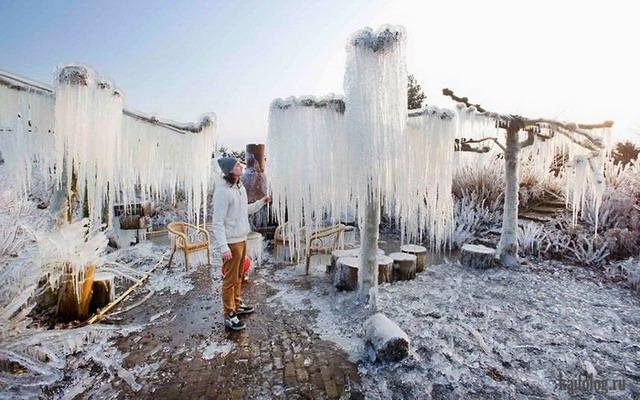 Зима, давай, до свидания (50 фото)