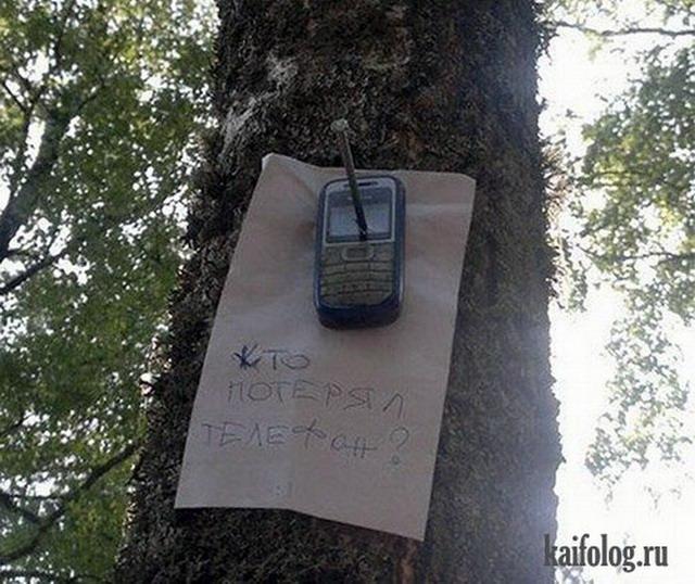 Приколы в лесу (50 фото)