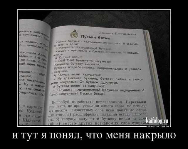 Чисто русские демотиваторы 139 55 фото