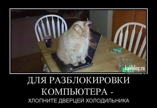 http://kaifolog.ru/uploads/posts/2013-03/thumbs/1363776400_008_7.jpg