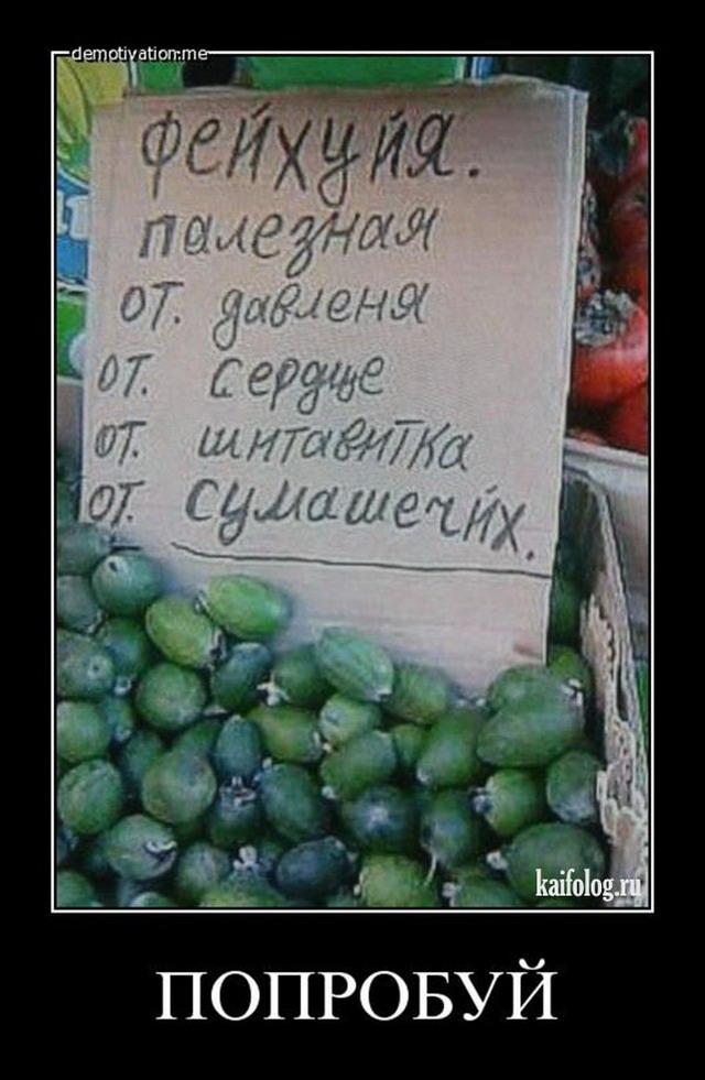 Чисто русские демотиваторы 144 60 фото
