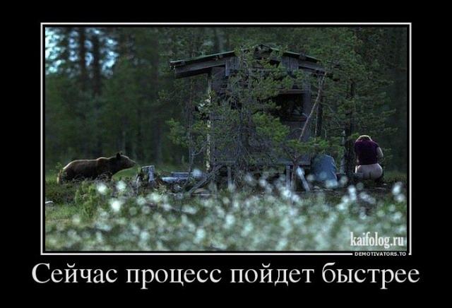 Демотиваторы - 171 (40 фото)
