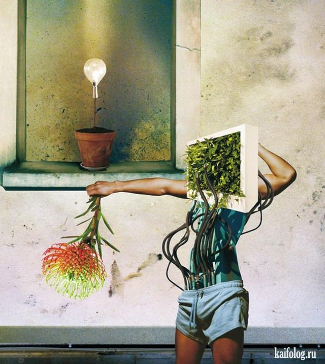 Иллюстратор Raintree 1969 (60 картин)