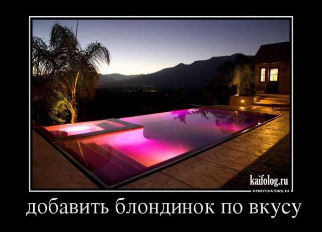 Демотиваторы - 178 (50 фото)