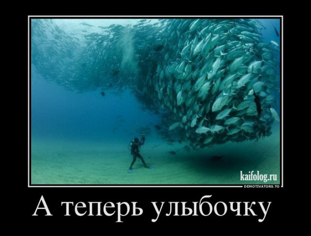 Демотиваторы - 179 (45 фото)