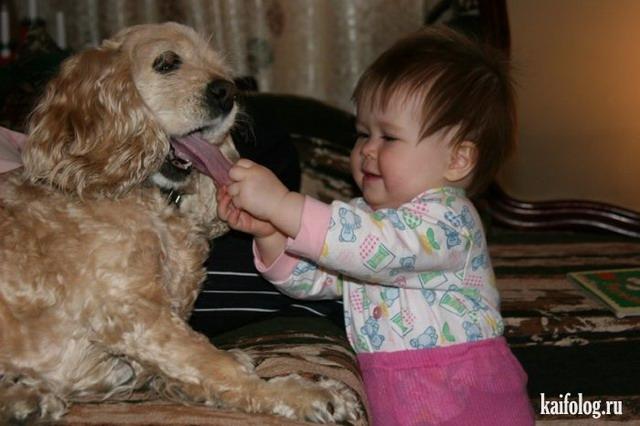 Дети и животные (50 фото)