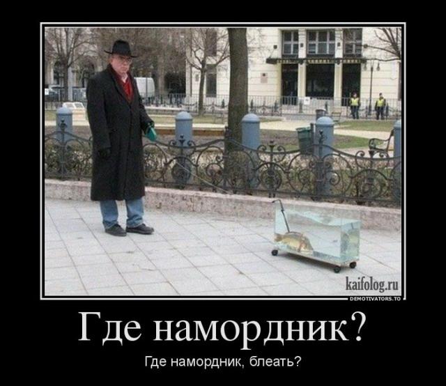 Демотиваторы - 182 (40 фото)
