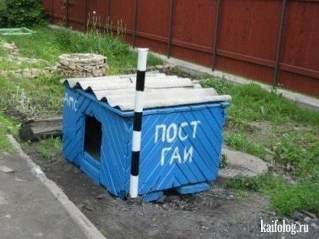 Сотрудники ГАИ препятствуют доставке продуктов на Майдан, - комендант Евромайдана - Цензор.НЕТ 8916