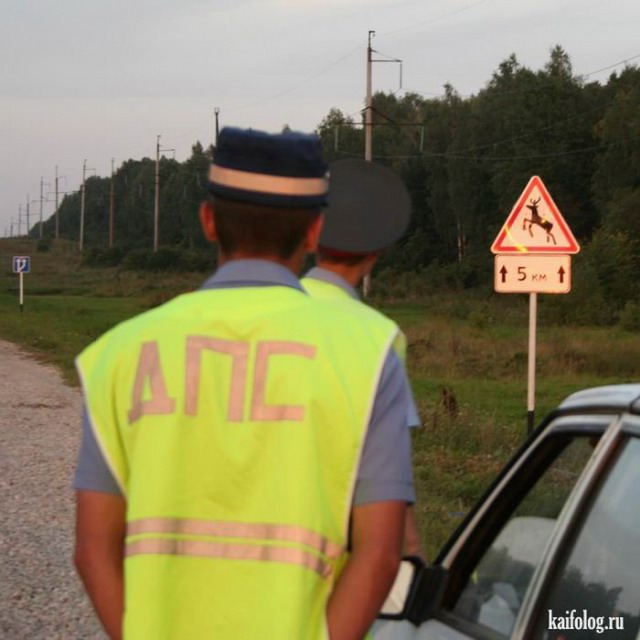 Сотрудники ГАИ препятствуют доставке продуктов на Майдан, - комендант Евромайдана - Цензор.НЕТ 1202