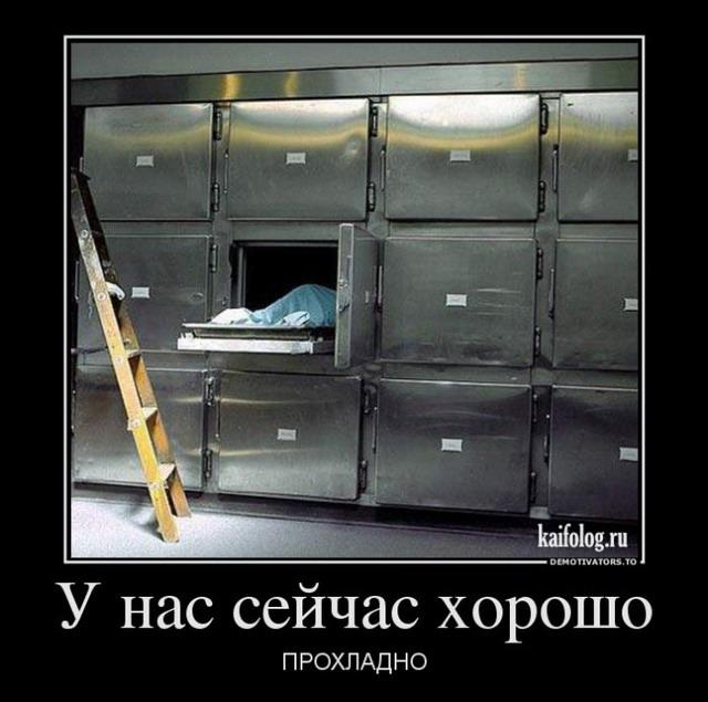 Демотиваторы - 185 (50 фото)