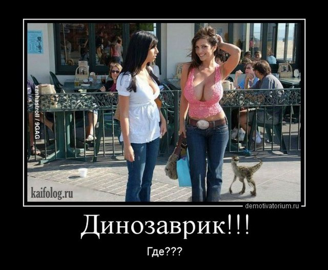 http://kaifolog.ru/uploads/posts/2013-08/1376964809_001.jpg