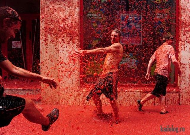 Томатные бои 2013 (35 фото)