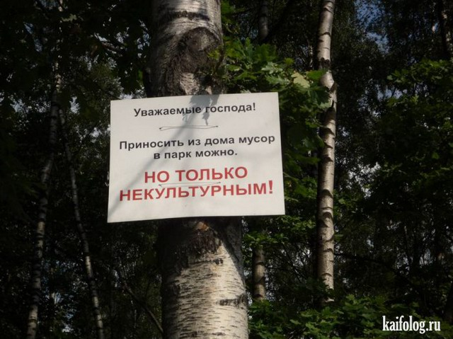 Чисто русские приколы. Подборка - 205 (90 фото)