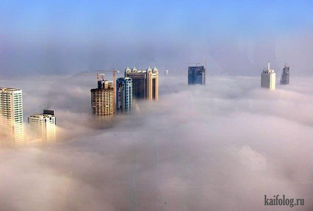 Тем временем в Дубае (35 фото)