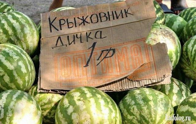 Собираем урожай или овощные приколы (50 фото)