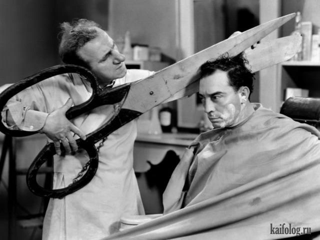 смешные фото про парикмахеров