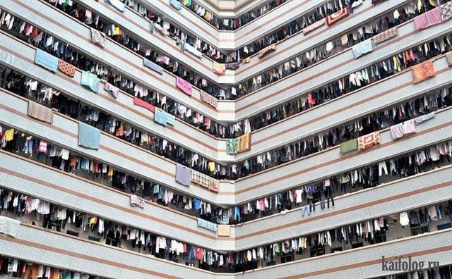 Однообразное множество (45 фото)