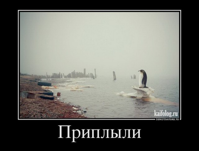 Демотиваторы - 199 (45 фото)
