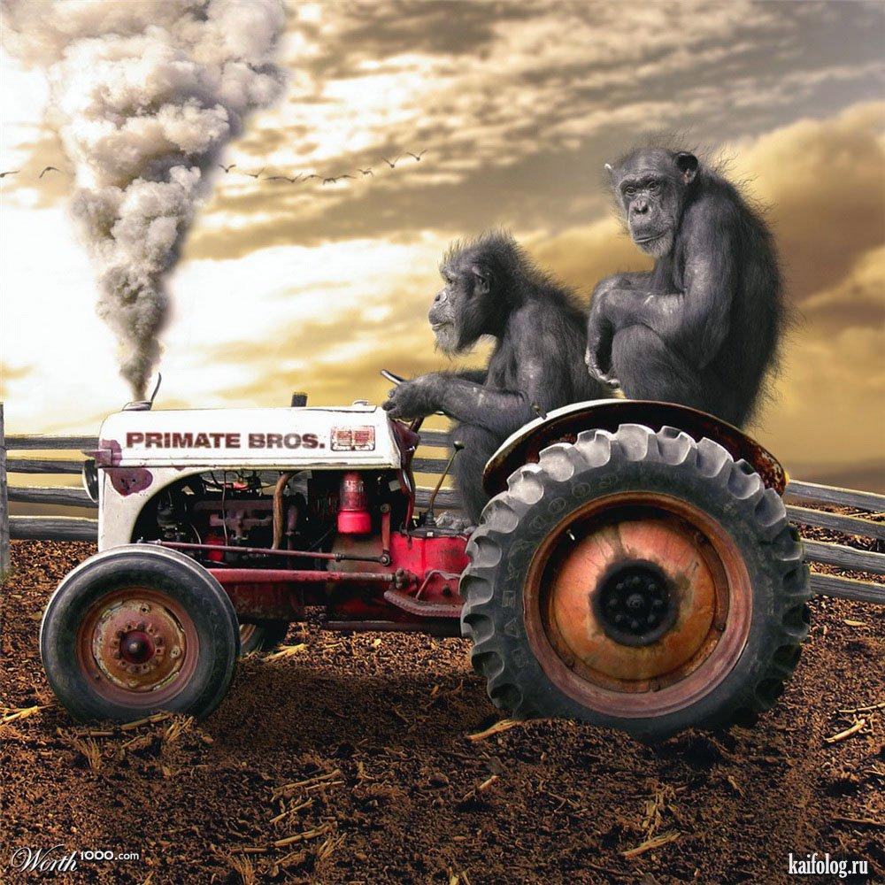 Смешные картинки с тракторами