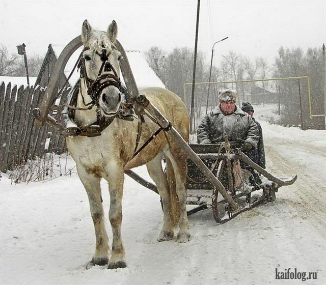 Позитивная Россия (65 фото)