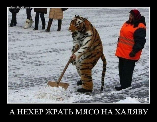 Чисто русские демотиваторы - 174 (50 фото)