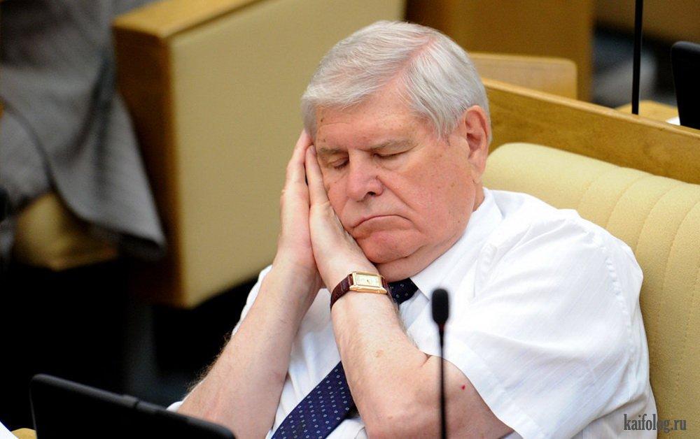 стали депутаты в думе спят фото популярные знаки