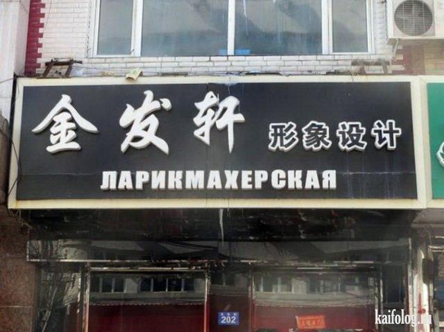 Трудности перевода (55 фото)