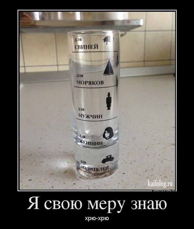 Чисто русские демотиваторы - 180 (60 фото)