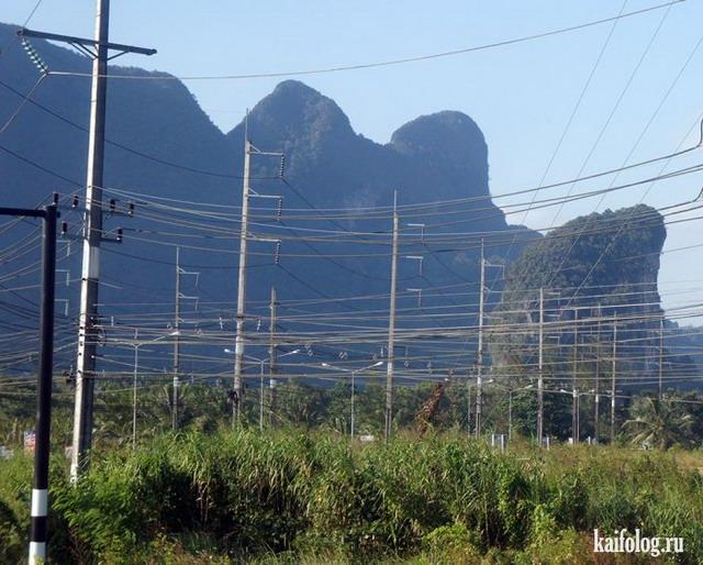 Тайский вояж Светланыча (85 фото и видео)