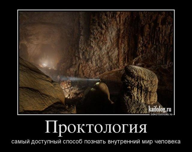 Демотиваторы - 209 (50 фото)