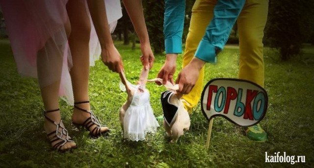 Необычные свадьбы (50 фото)