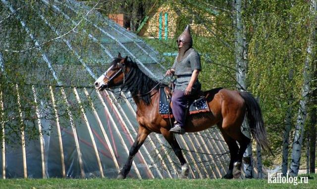 Чисто русские приколы. Подборка - 227 (80 фото)