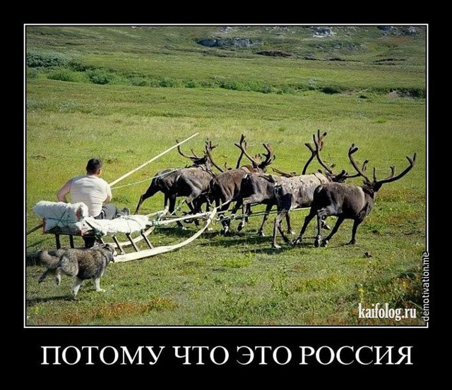Сейчас не время отменять санкции против РФ, - глава МИД Дании - Цензор.НЕТ 1026