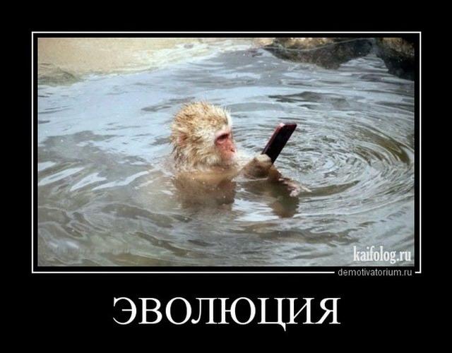 Демотиваторы - 227 (55 картинок)
