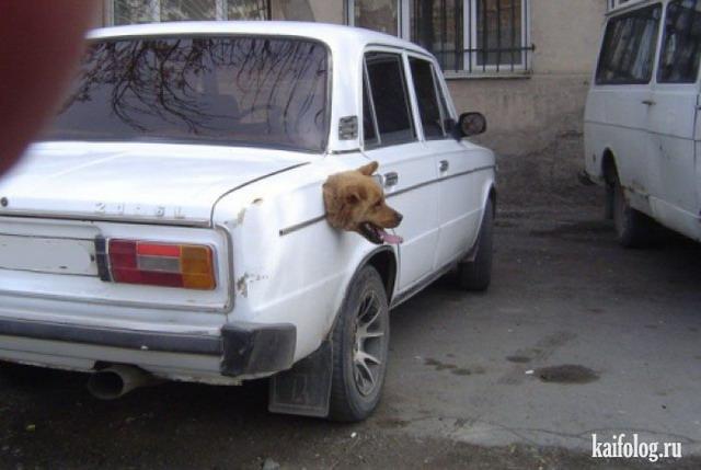 Русские авто приколы 55 фото