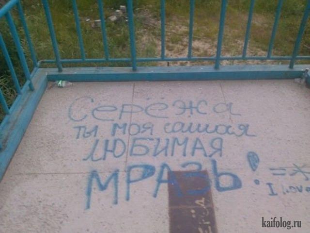 Русский твиттер (60 фото)