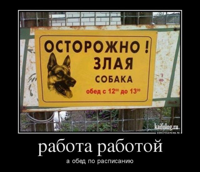 Чисто русские демотиваторы 195 60 фото