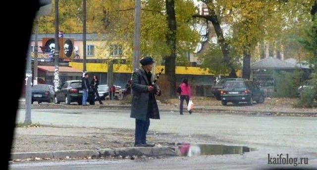 День ГИБДД (ГАИ) (50 фото)