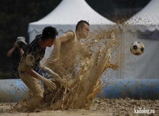 Фото приколы недели (30 июня - 6 июля 2014)