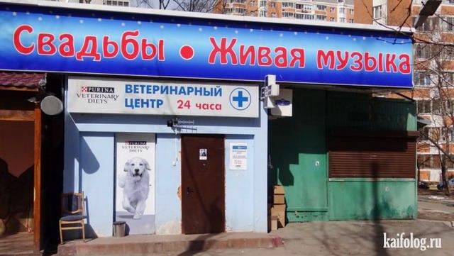 Чисто русские приколы. Подборка - 247 (80 фото)