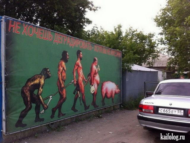 Чисто русские приколы. Подборка - 250 (80 фото)