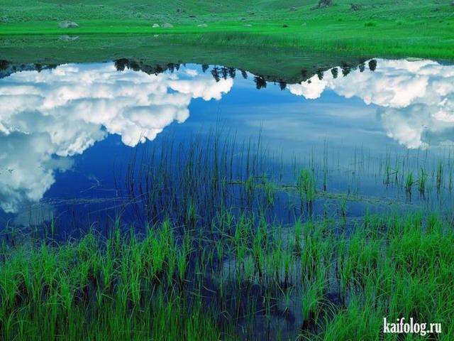 Красивые фото природы (60 фото)