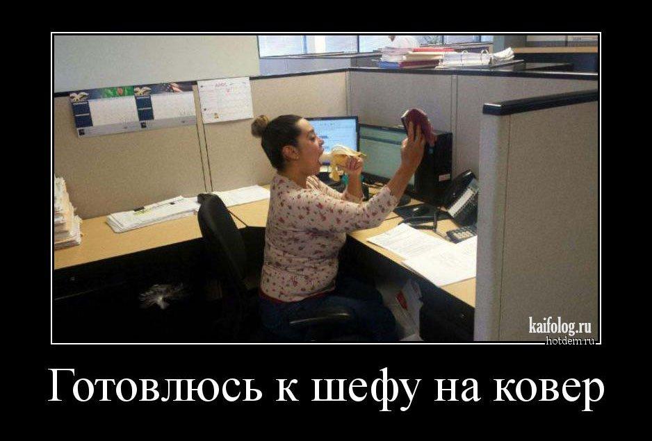 демотиваторы для шефа
