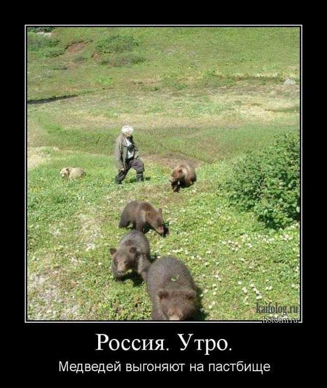 Демотиваторы по-русски - 209 (50 демотиваторов)