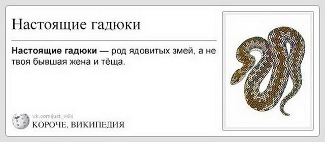 Короче, Википедия (45 картинок)