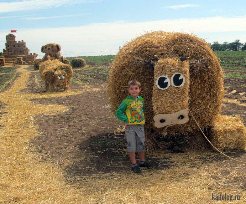 отойти приколы в сельском хозяйстве фото если есть